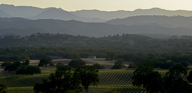 The view from Tre Gatti Vineyards in California's Monterey County.