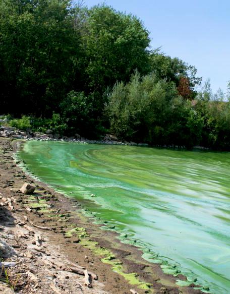 Lake Erie in Ohio. Photo courtesy of EPA.