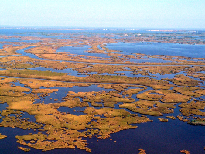 Louisiana loses a football field's worth of land every 45 to 60 minutes. Photo by Barry Yeoman.